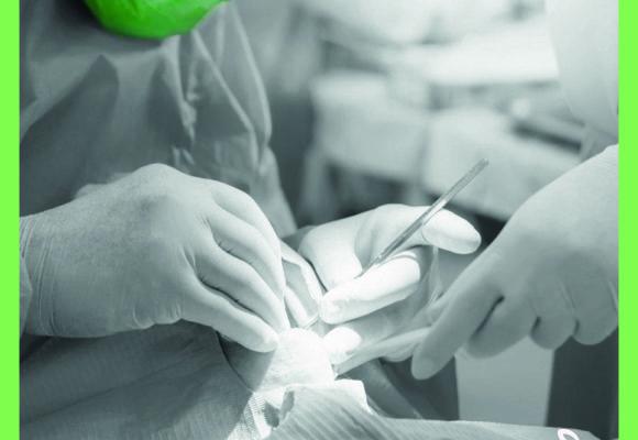 Il dentista è sicurezza.